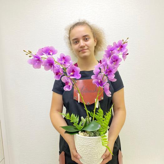Орхидея двойная💖💝
