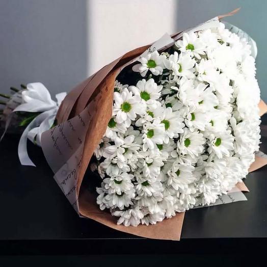 Хризантема «ромашка»