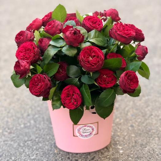 Красные кустовые пионовидные розы в коробке «Марун»