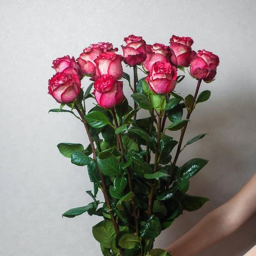 11 роз игуазу