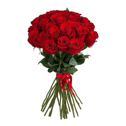 Роза 21 шт