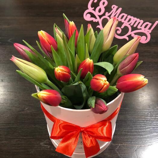 Tulip in a box 007 15 pcs