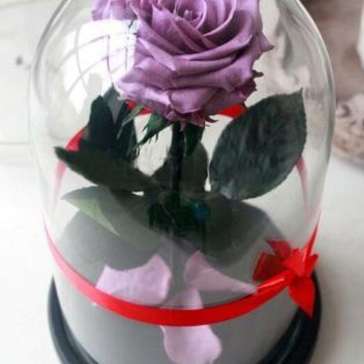 Роза в колбе Premium Серенивая