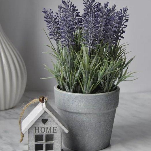 Лаванда свежая в горшечке высокая от Floristic World: букеты цветов на заказ Flowwow