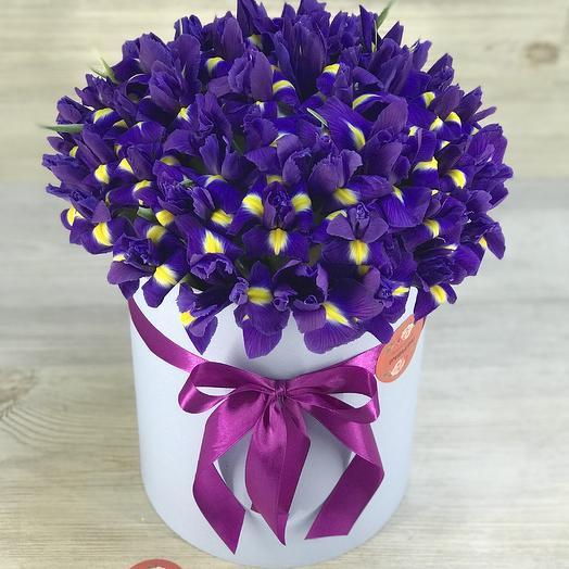 Коробка из 51 ириса: букеты цветов на заказ Flowwow