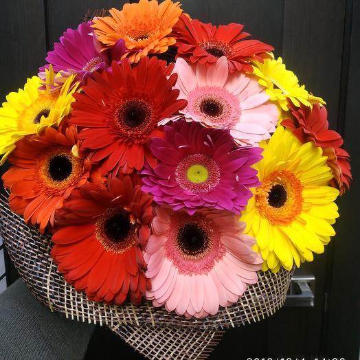 Букет из 13гербер: букеты цветов на заказ Flowwow