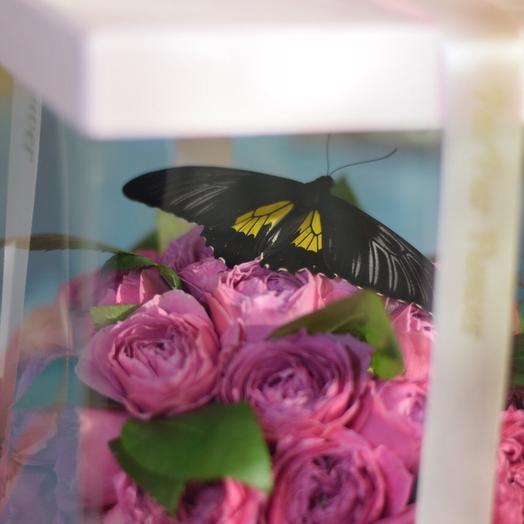 Тропическая красавица 🦋 в цветочной коробочке 🌹