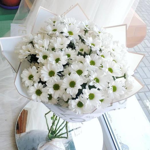 Моно букет из 11 белых ромашковых хризантем