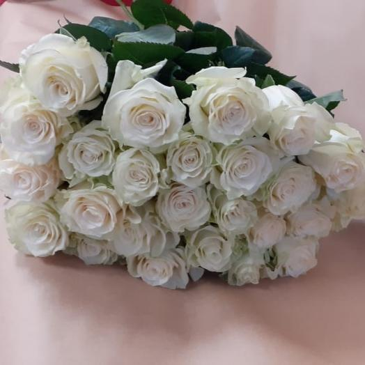 Роза белая Мондиаль