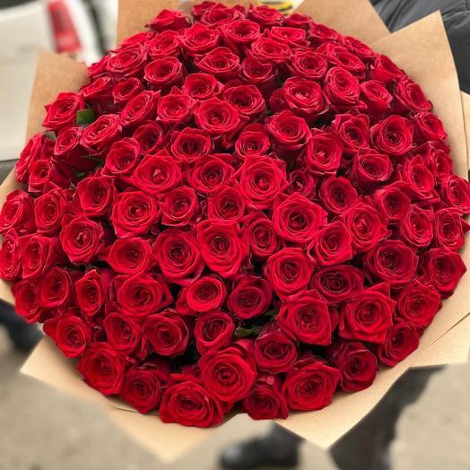 101 красная Роза 🌹