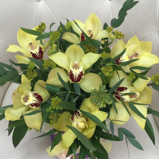 «Шарм Орхидей»