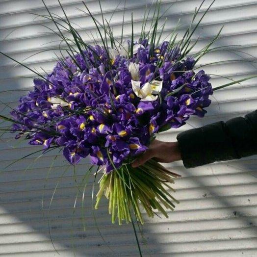 Букет из 35 ирисов: букеты цветов на заказ Flowwow