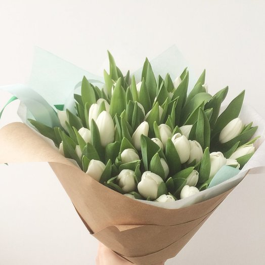 49 белых тюльпанов