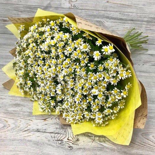Монобукеты . Ромашки . N63: букеты цветов на заказ Flowwow