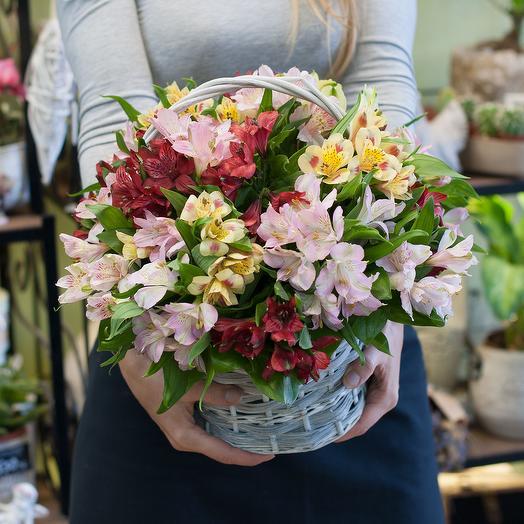Корзина из разноцветных альстромерий (19 шт): букеты цветов на заказ Flowwow