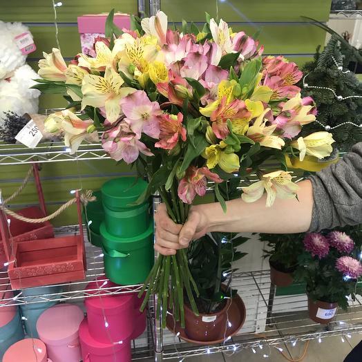 19 Альстромерий микс: букеты цветов на заказ Flowwow