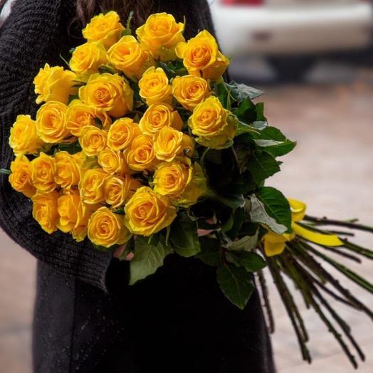 "Roses ""Penny Lane"""