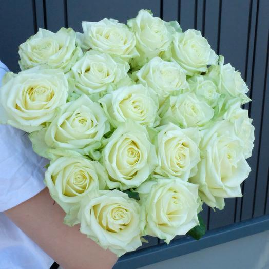 19 White Roses 60cm