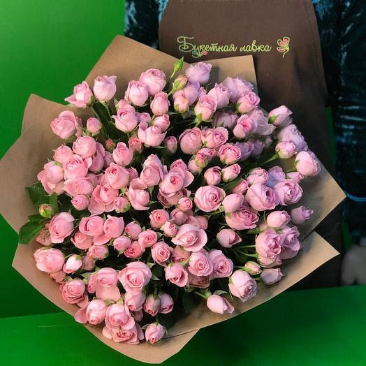 31 кустовая Роза пинк