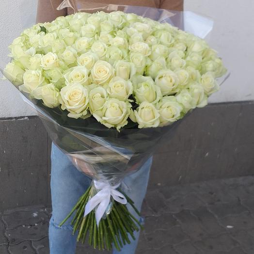 Белая роза 101