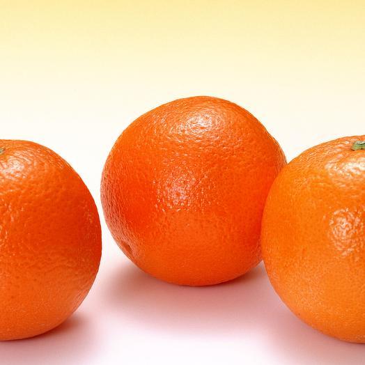Апельсины Египетские 500 гр
