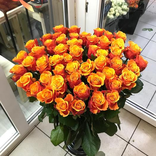 Роза 51 шт-80 см