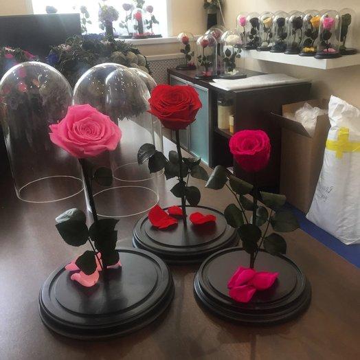 Долговечная стабилизированная живая роза: букеты цветов на заказ Flowwow