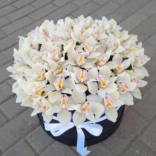 Орхидея Цимбидиум: букеты цветов на заказ Flowwow