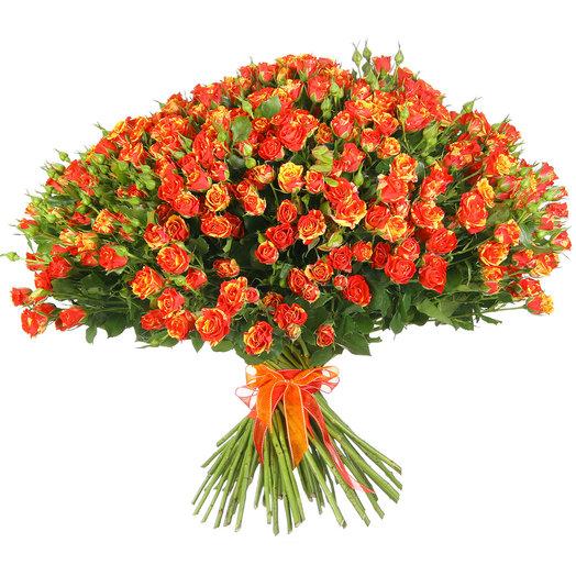 Букет из 51 красно-желтой кустовой розы: букеты цветов на заказ Flowwow