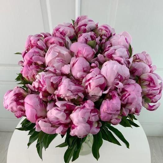 Пионы сорта Сара Бернар: букеты цветов на заказ Flowwow