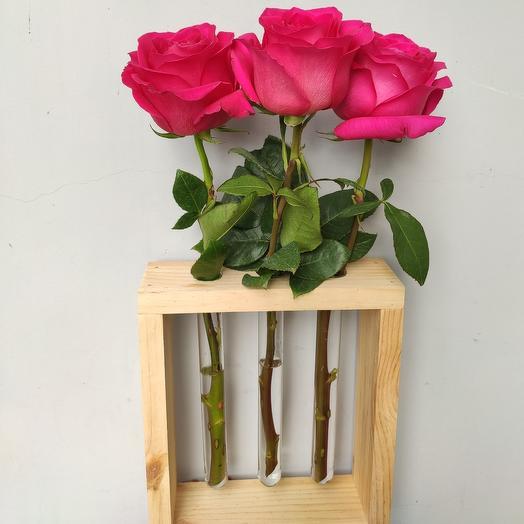 Розы в эковазе