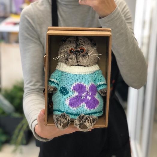 Кот в свитере