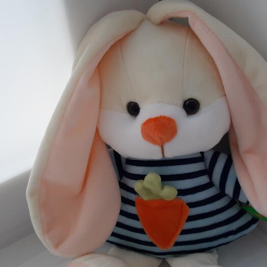 Зайка с морковкой