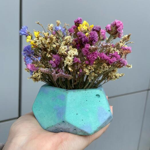 Concrete planters with dried flowers