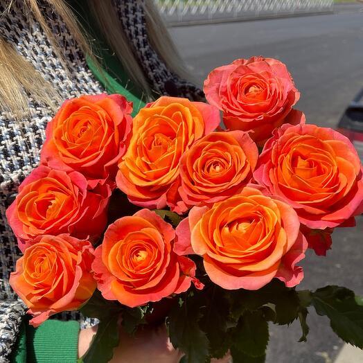 9 одноголовых роз 💞