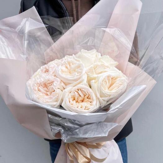 Пионовидные розы Вайт Охара