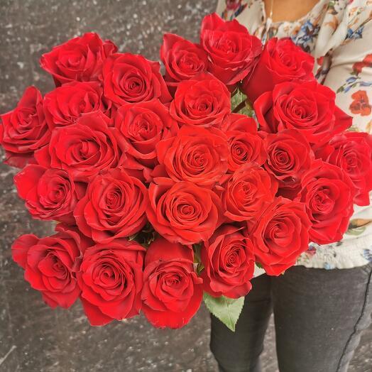 Букет из 25 красных голландских роз Эксплорер