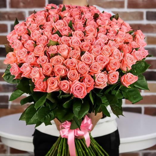 Розы. Букет из 101 коралловой розы. N654