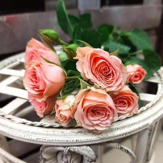 Кустовые розовые розы поштучно