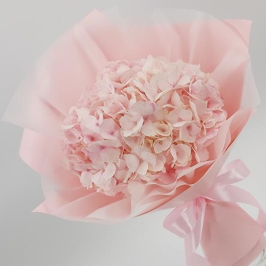 Розовая гортензия 🌸