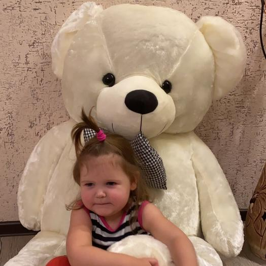 Bear 140cm