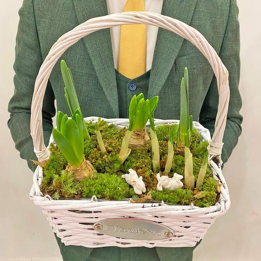 Весенняя корзинка с первоцветами