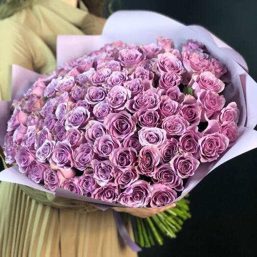 101 lavender rose