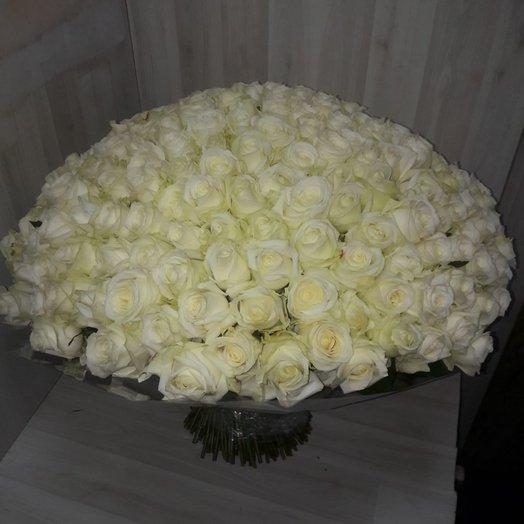 Букет 201 шт белых роз: букеты цветов на заказ Flowwow