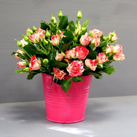 """Букет  кустовых роз """"Розы в ведерке"""": букеты цветов на заказ Flowwow"""