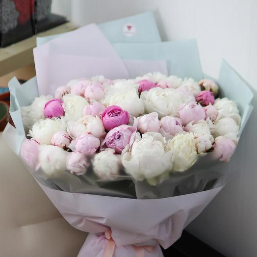 51 белый и розовый пион в дизайнерской упаковке: букеты цветов на заказ Flowwow