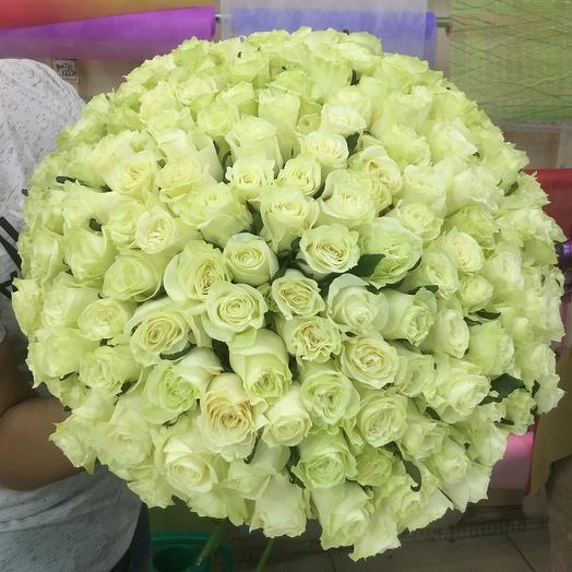 101 роза 60 см МоноМондиаль: букеты цветов на заказ Flowwow