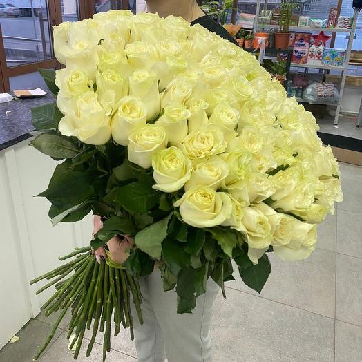 101 роза Мондиал