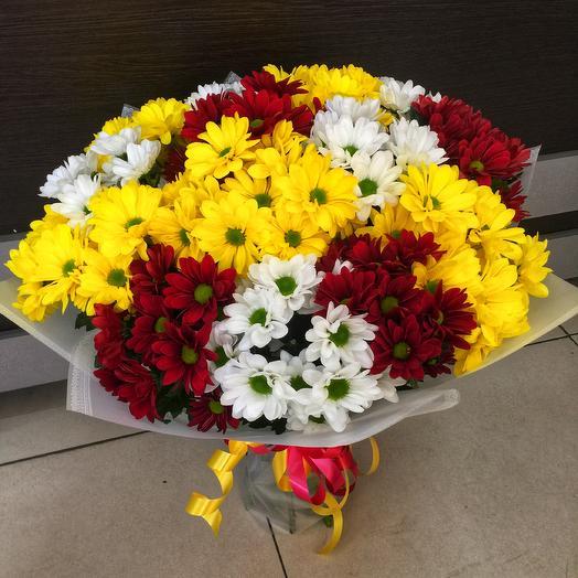Радуга ромашек: букеты цветов на заказ Flowwow