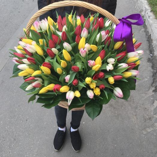 151 тюльпан в корзине